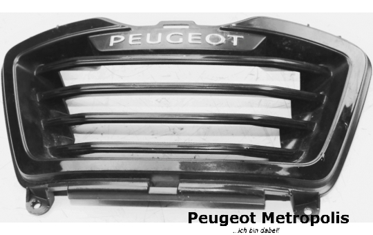 Peugeot Metropolis 400 Front Grill Titan (RS)