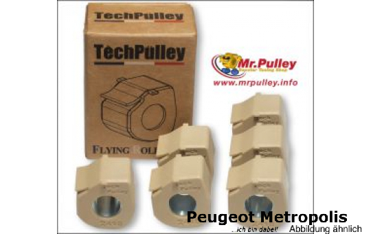 TechPulley Gleitrollen (FR) MP3 400/500