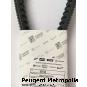 Piaggio MP3 400 Antriebsriemen