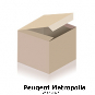 Peugeot Metropolis 400 Tacho Modeknopf